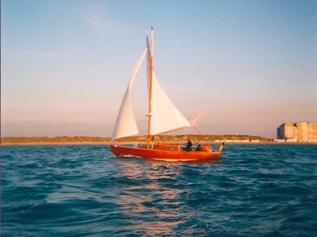 Bécassine op zee